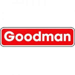 Goodman fabrique des thermopompes murales depuis longtemps.